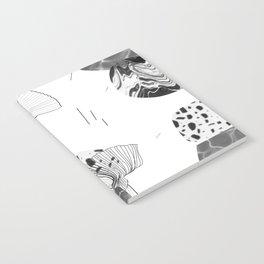 CEBW14-15A Notebook
