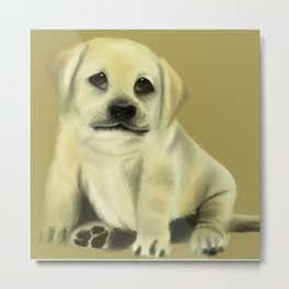 Chubby Puppy with Doleful Eyes Metal Print