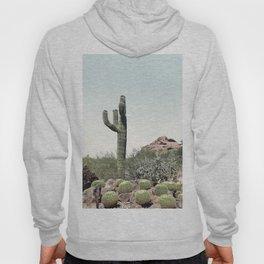 Cactus in the desert Hoody