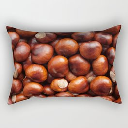 Shiny conkers Rectangular Pillow