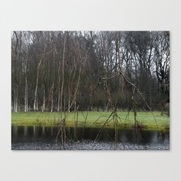 A little pond in a forest in the Netherlands Canvas Print