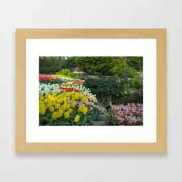 Technicolor Tulips Framed Art Print