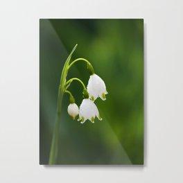 Snowflake Flowers Metal Print