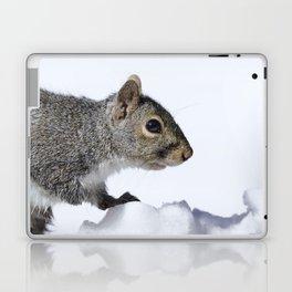 Snow Squirrel Laptop & iPad Skin