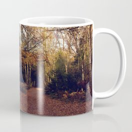 Walk In The Autumn Woods Coffee Mug
