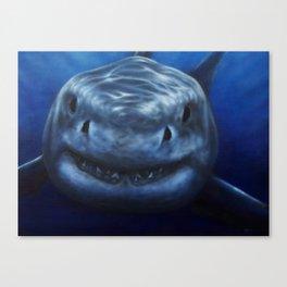 white pointer shark Canvas Print