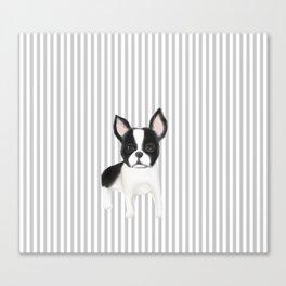 boston terrier stripe Canvas Print