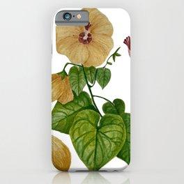Hau of Hawaii Botanical iPhone Case