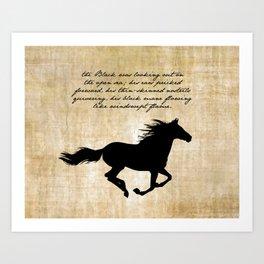 The Black Stallion - Walter Farley Art Print