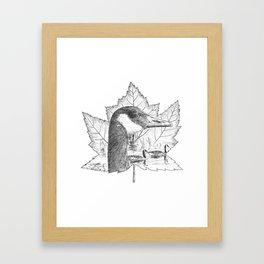 Canada Goose on Maple Leaf Framed Art Print