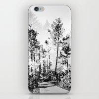 woodland iPhone & iPod Skins featuring Woodland by Schwebewesen • Romina Lutz