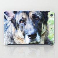 german shepherd iPad Cases featuring GERMAN SHEPHERD PHOTOGRAPH by Allyson Johnson