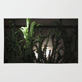 Nighttime in the Garden, 6 Rug