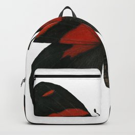 BD Butterfly Backpack