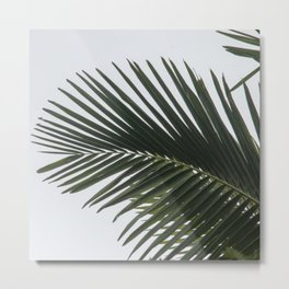 Nature pattern Metal Print