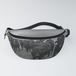 Hanging Out - Black and White Photo of Cows in Kansas Fanny Pack