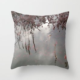 Cranberries Waiting To Be Harvested Throw Pillow
