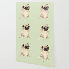 Sweet Fawn Pug Wallpaper