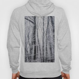 Snow on Branches (Color) Hoody