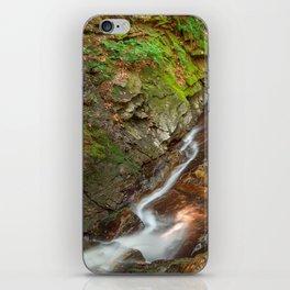 Chesterfield Gorge Stream iPhone Skin