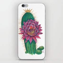 Crowned Cactus with Pink Flower Blossom iPhone Skin