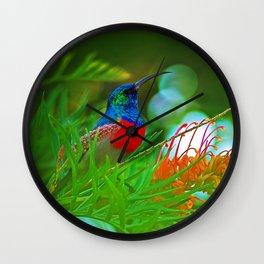 Hummingbird with iridescent colours Wall Clock