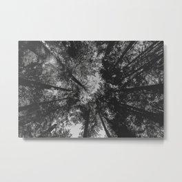 Tree Tops // black and white Metal Print