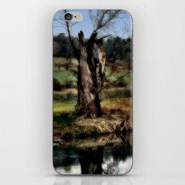 Alter Baum iPhone Skin