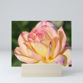 Rose Pink Yellow Mini Art Print