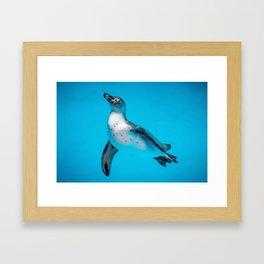 Penguin Life Framed Art Print