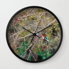 Halcyon smyrnensis Wall Clock