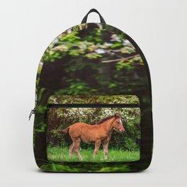 Nice little foal Backpack