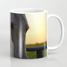 Beautiful Horse at Sunset Coffee Mug