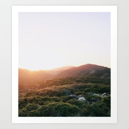 Golden Hour in the Marin Hills Art Print