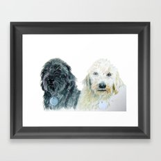 Two Labradoodles Framed Art Print