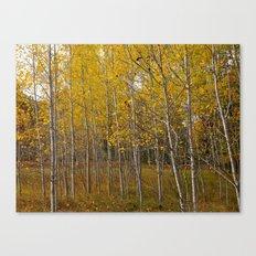 Autumn in Cheboygan, MI Canvas Print