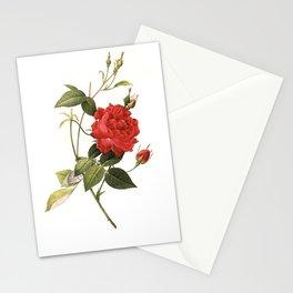 XXXL Resolution Rose | Antique Flower Illustrations Stationery Cards
