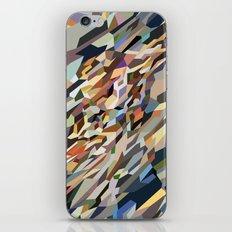 Rock iPhone & iPod Skin