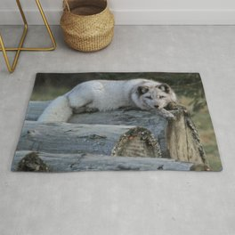 Arctic fox resting on logs Rug