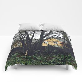 Houses in the forest Comforters