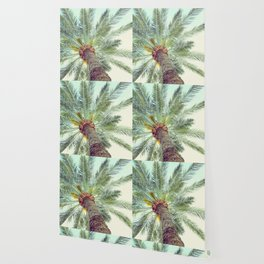 tropicana yes Wallpaper