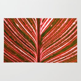 Feather Leaf in Red Rug