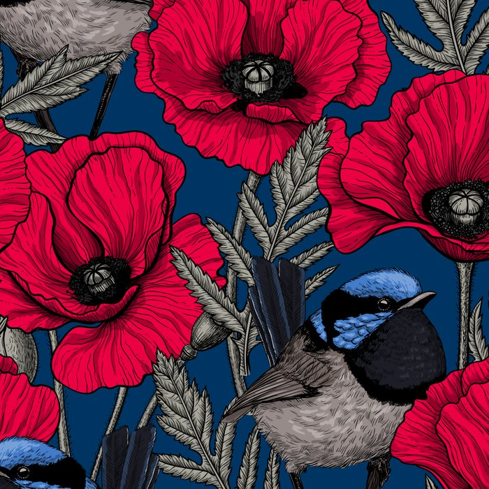 Fairy wren and poppies Leggings