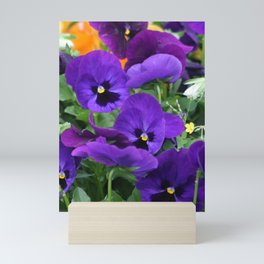 Purple Pansy Mini Art Print