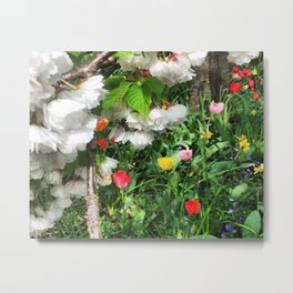Cherry Blossoms and Tulpis Metal Print