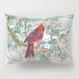 Look Beyond: Northern Cardinal Pillow Sham