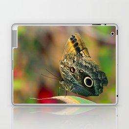 Butterfly - Caligo memnon Laptop & iPad Skin