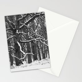 Tree in the winter (RR 272) Stationery Cards