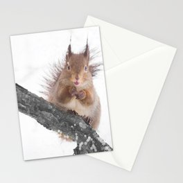 Little squirrel - smack! Stationery Cards