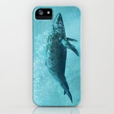 Song of the Sea iPhone SE Slim Case